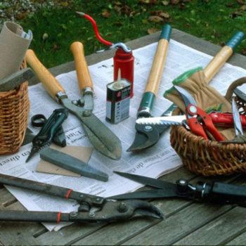 Préservez et entretenir les outils de jardin